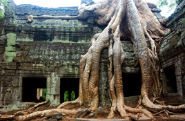 Vietnam and Cambodia Family Discovery - 15Days